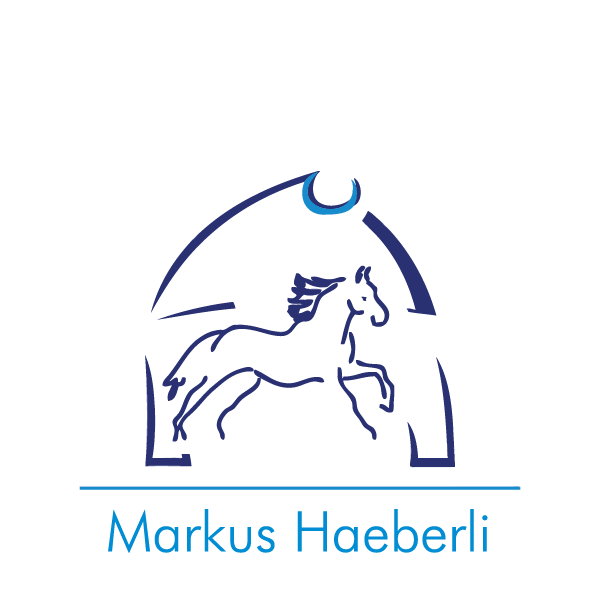 MarkusHaeberli-Logo-01