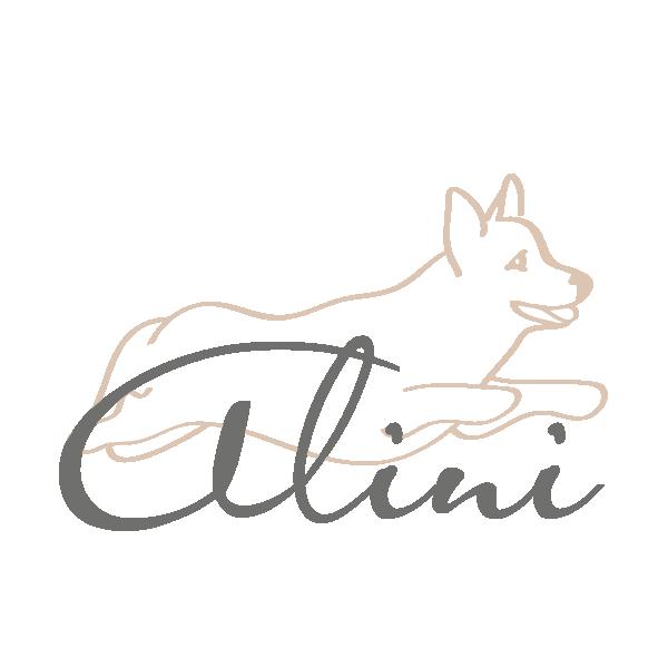 alini-Logo